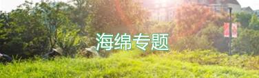 33209_副本