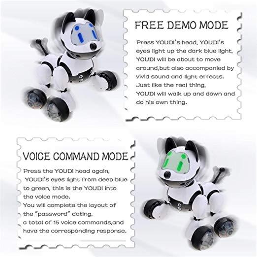 HANMUN Electronic Remote Control RC Robots Walking Dancing Smart Robotics with Music Lights for Kids