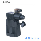 S-BSG电磁溢流阀