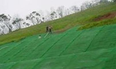 3、公路铁路施工-公路边坡绿化施工