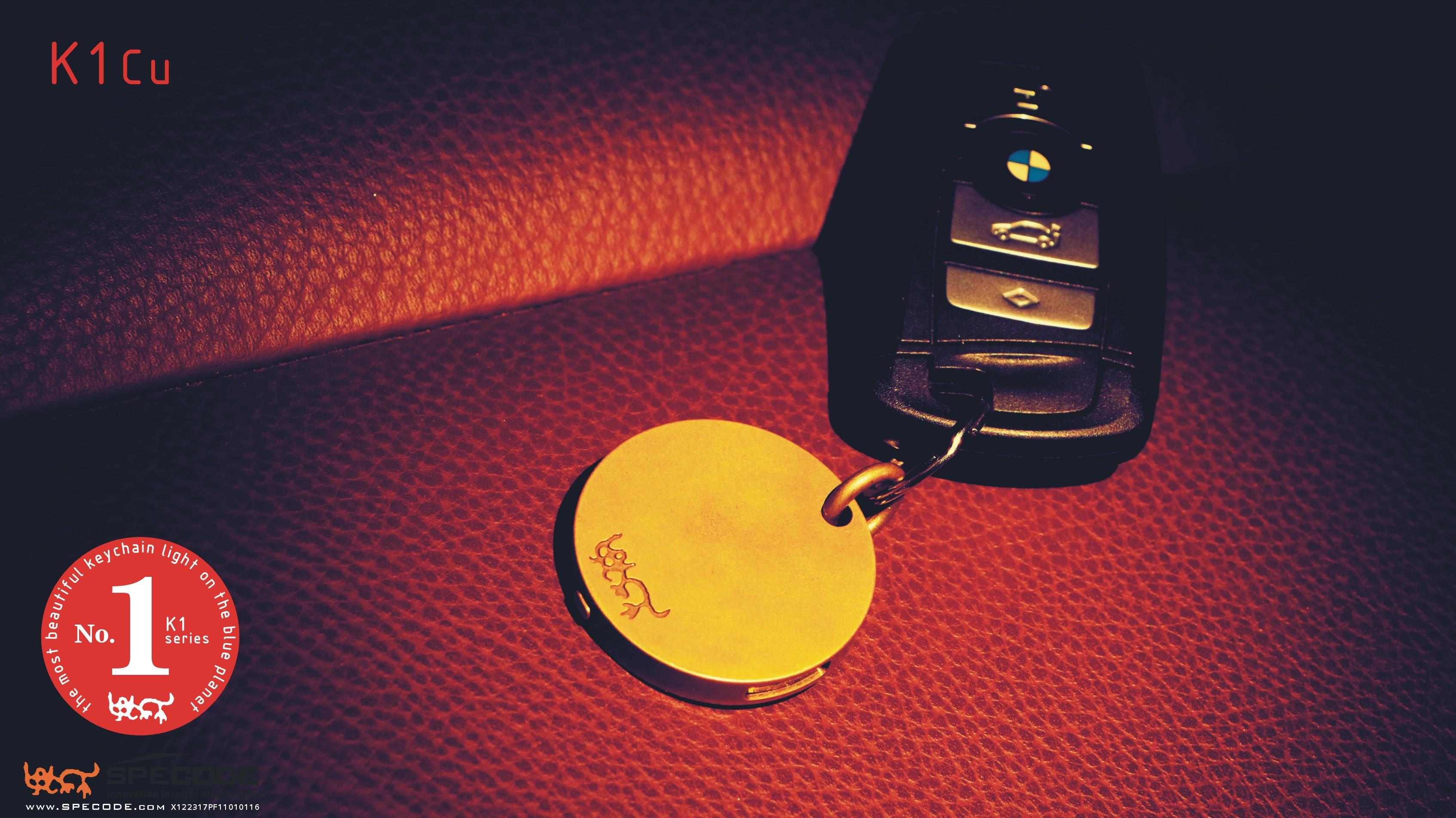 13171223SPECODEK1Cu-key
