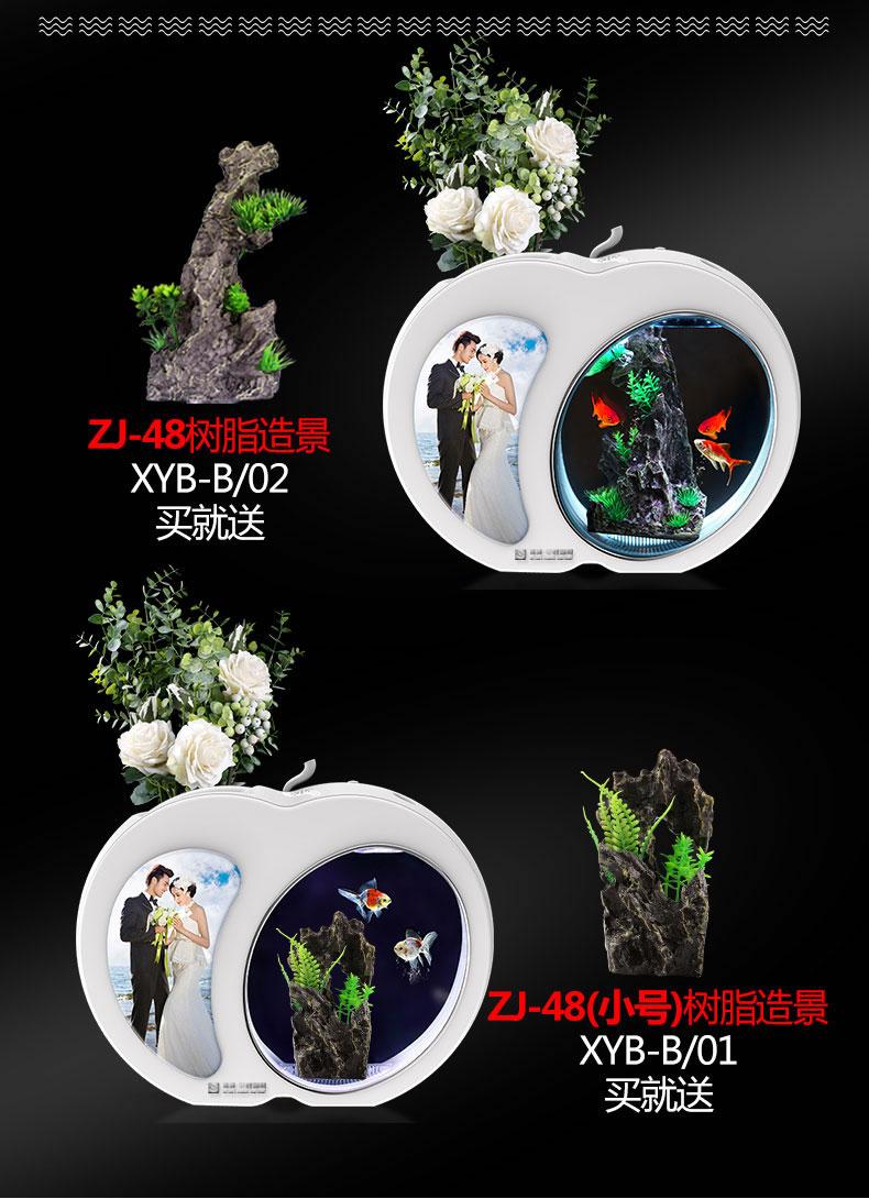 XYAXYB-5